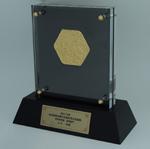 150415_award_yamago2