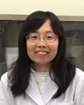 Ms.yamaguchi